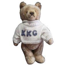 """Vintage Steiff Mohair Teddy Bear 12"""""""