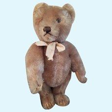 """1950's Steiff 10 1/2"""" Mohair Teddy Bear"""
