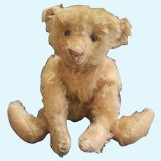 """Adorable Antique 1908 Steiff 10"""" Mohair Teddy Bear"""