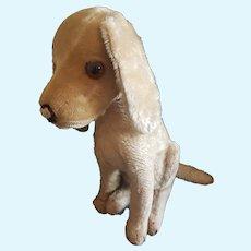 """Vintage 1920's Steiff 10 1/2"""" Mohair Treff Dog"""