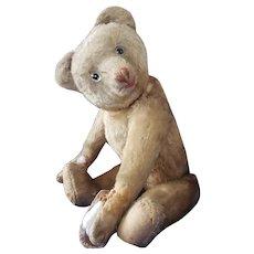 "Rare 1928 Eduard Cramer Red Mouth Smiling Mohair Teddy Bear 21"""