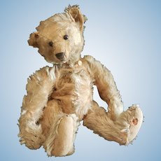"""Adorable 1910 Steiff Mohair Teddy Bear 14"""""""