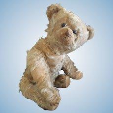 """Wonderful 1920's Mohair Teddy Bear 13"""""""