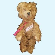 "Adorable Vintage 1920's Silk Plush Berlin Teddy Bear 13"""