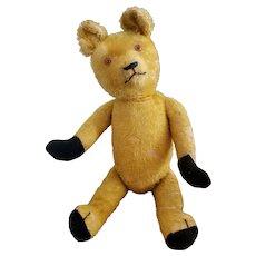 """Adorable 21"""" Mohair Teddy Bear with Glass Eyes"""