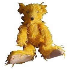 Comical Vintage Googly Eye Mohair Teddy Bear with Big Feet
