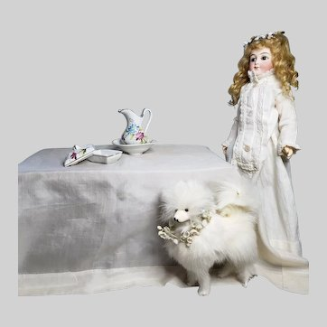 Antique Miniature Spitz Dog Fashion Doll Accessory