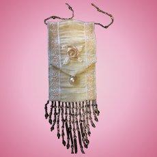 Beautiful Silk & Beaded Bag