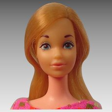 Steffie Face Barbie Doll with Solid Body European