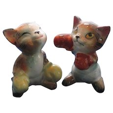 Boxing Cats Salt and Pepper Shakers