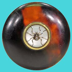 Antique Celluloid Pill Box Set with Essex Crystal Spider