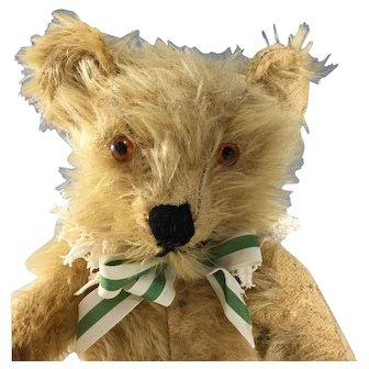 "English Mohair Teddy Bear~ 11"" Velvet pads~ Charming~"