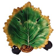 Antique Griffin, Smith & Hill Etruscan Majolica Leaf Dish