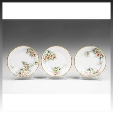Set of Three Hand Painted Carl Tielsch Bavarian Dessert Plates