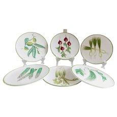 Mid-Century Italian Ceramic Faience Garden Plates - Set of Six