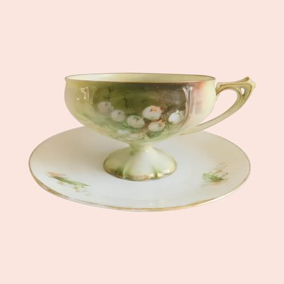 RS Prussia Antique Hand-Painted Lily Porcelain Tea Cup and Saucer Set