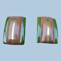 Pair Bakelite Wood Clips