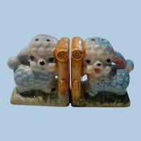 Liitle Lambs Salt & Pepper