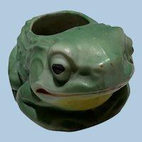 Ceramic  Frog Planter