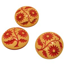 Celluloid  Floral Buttons