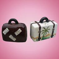 Suitcase Salt & Pepper Set