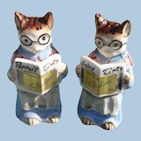 Kittys Newspaper Salt & Pepper