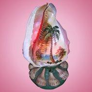 Miami Shell Light Folk Art