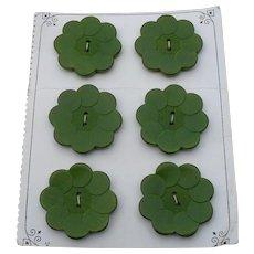 6 Green Wood Buttons