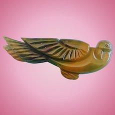 Large Green Bakelite Bird Pin