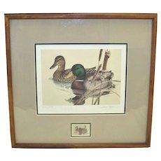 Vintage 1981 Larry Hayden Framed Mallard Duck Print