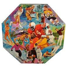 Vintage 1973 Springbok Octagonal Puzzle Sporting Life