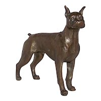 Vintage 1920's-1930's Large Jules Moigniez Of Vienna Bronze Figural English Boxer Dog