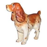 Vintage 1950's Brown & White Cocker Spaniel Dog Figurine