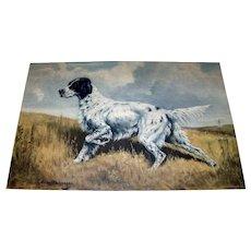 Vintage 1938 Framed Original Edwin Megargee English Setter Hand-Colored Dog Print