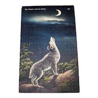 Vintage 1940's Lone Singing Coyote Travel Postcard