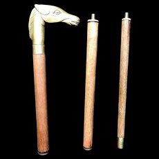 Vintage Brass Horse Head Walking Stick or Cane
