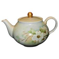 Vintage Hand Painted German Tea Pot