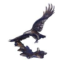 Vintage 1990 Winged Majesty Signed Ronald Van Ruyckevelt Bronze Eagle