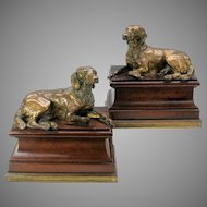 Large pair of antique Bronze Hound dogs on mahogany & bronze bases.