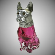 Figural cranberry glass French Bulldog sugar shaker silvered head with glass eyes