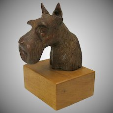 Masterfully carved wood bust of a Schnauzer dog