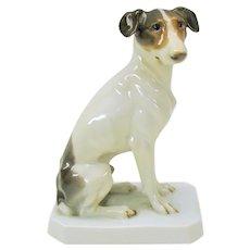 Vintage Rosenthal porcelain figure Jack Russell Terrier dog