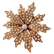 Art Nouveau flower 14k seed pearl and diamond lavalier brooch watch pin pendant