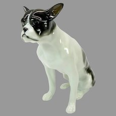 Vintage Gotha Pfeffer German porcelain Boston Terrier dog figurine