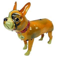 Vintage Blomer & Schuler walking French Bulldog German wind up clockwork tin toy