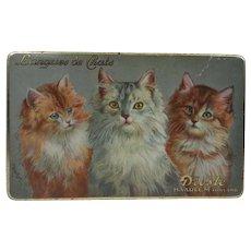 Antique tin lithographed Cat Dutch biscuit tin Langues de Chat Cats tongue biscuits