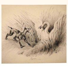 Amusing Drawing Dog and Swan