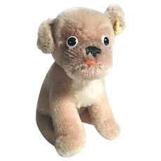 Adorable Steiff Dog Mopsy 1950/70 #2212/01