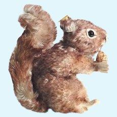 Steiff Squirrel with Pine Cone Perri