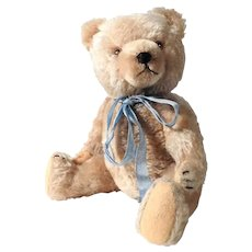 Darling Teddy Bear with Voice